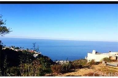 810 Santa Ana St, Laguna Beach, CA 92651 (#OC17205160) :: Zen Ziejewski and Team