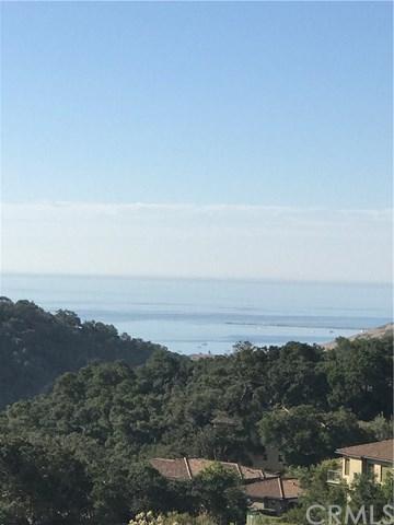 2890 Rock Dove Court, Avila Beach, CA 93424 (#SP17238139) :: Pismo Beach Homes Team