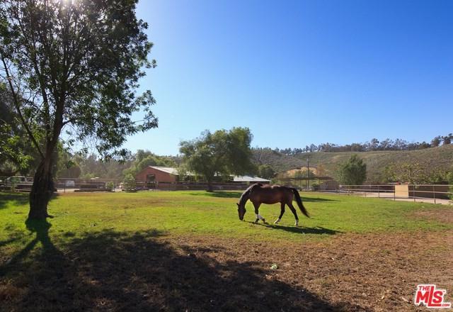 7202 Balcom Canyon Road - Photo 1