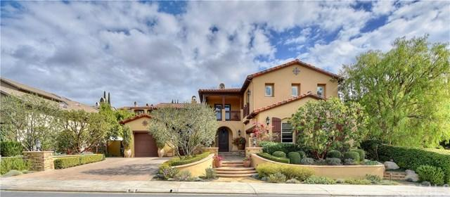 8 Leatherwood Court, Coto De Caza, CA 92679 (#OC18034524) :: Doherty Real Estate Group