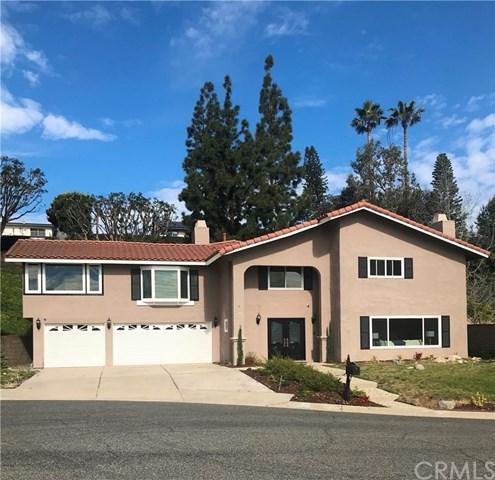 10971 Furlong Drive, North Tustin, CA 92705 (#PW18063625) :: RE/MAX Masters