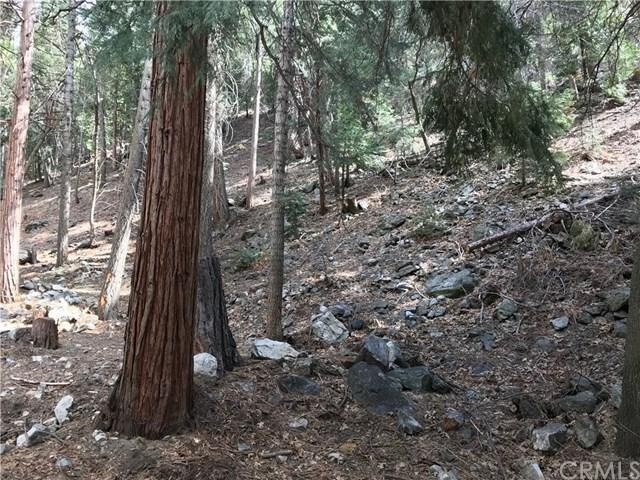 9437 Glen Drive, Forest Falls, CA 92339 (#EV18082003) :: Impact Real Estate