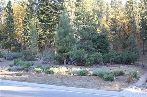 40953 Seneca Trail, Big Bear, CA 92315 (#PW18088941) :: UNiQ Realty