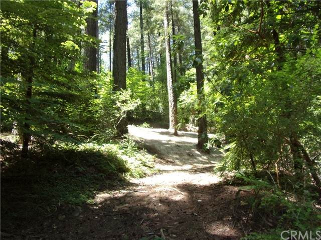 17121 Edgewood Way - Photo 1