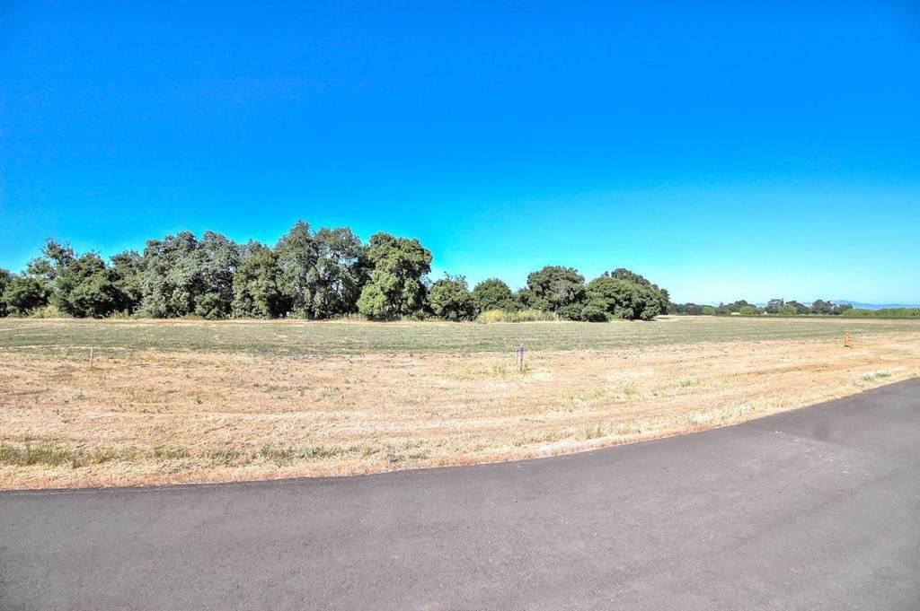 307 Pacheco Creek Lane - Photo 1