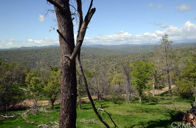 0 Misty Ridge - Photo 1