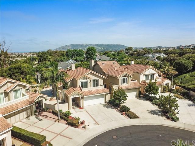 5 Palm Beach Court, Dana Point, CA 92629 (#OC18166543) :: Berkshire Hathaway Home Services California Properties