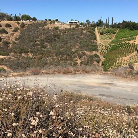 0 Palos Verdes Road, Bonsall, CA 92003 (#SW18174891) :: The Laffins Real Estate Team