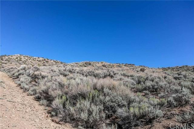 0 Rustic Canyon Road, Big Bear, CA 92314 (#EV18186440) :: RE/MAX Masters