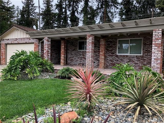 1048 Almarida Drive, San Jose, CA 95128 (#PT18191697) :: Z Team OC Real Estate