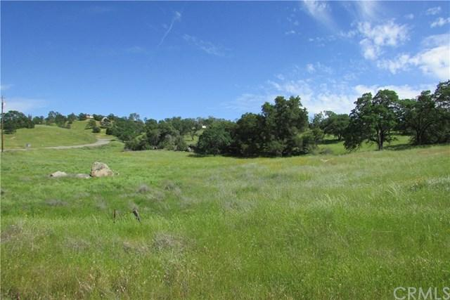 0 Lilley Mountain Dr. & Road 400 - Photo 1