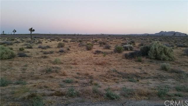 0 Twenty Mule Team Road, Kramer Junction, CA 93516 (#SW18209936) :: Go Gabby