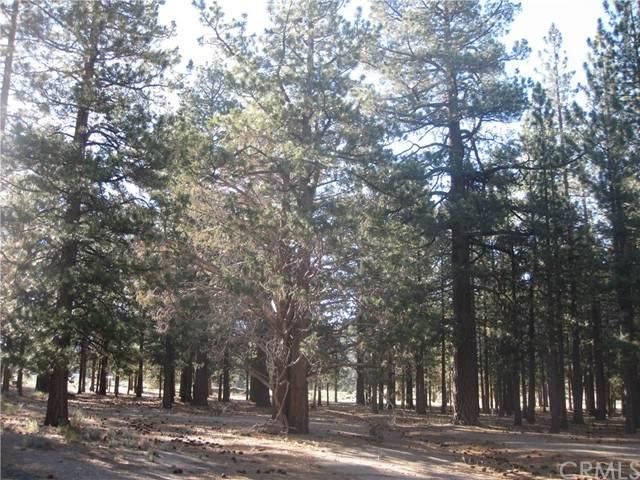 2818 Erwin Ranch Road - Photo 1