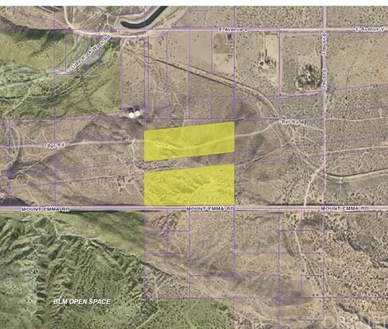 23 Vac/Mt Emma Pav /73Th Ste, Littlerock, CA 93550 (#SR18218252) :: The Ashley Cooper Team
