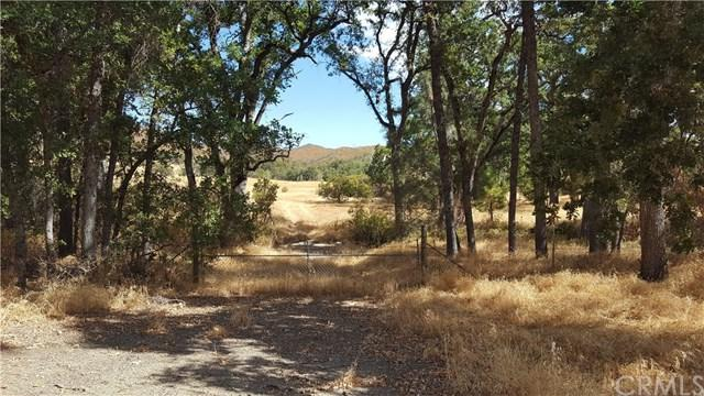 26100 Morgan Valley Road, Lower Lake, CA 95457 (#LC18224714) :: Fred Sed Group