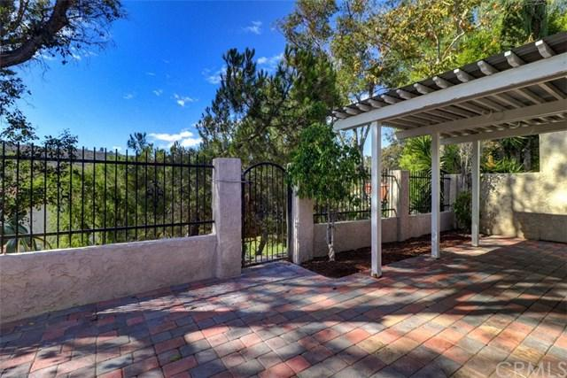 30795 Paseo El Arco, San Juan Capistrano, CA 92675 (#OC18249116) :: Pam Spadafore & Associates