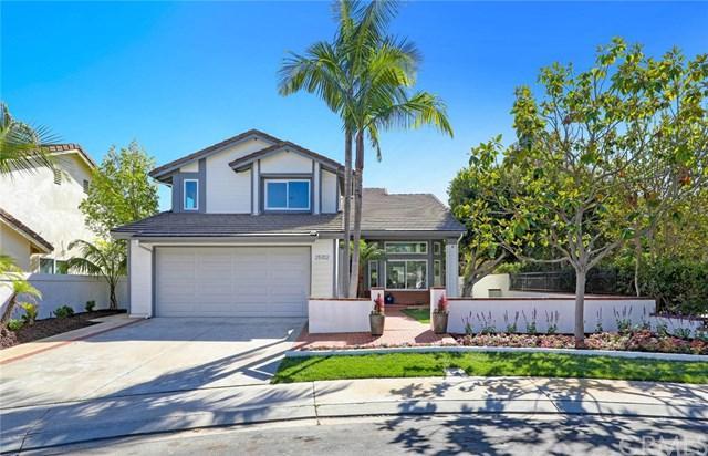 25102 Danapepper, Dana Point, CA 92629 (#OC18251325) :: Z Team OC Real Estate