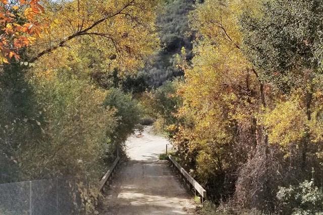 0 Willow Glen - Photo 1