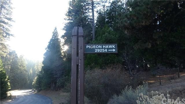 29191 Pigeon Hawk - Photo 1