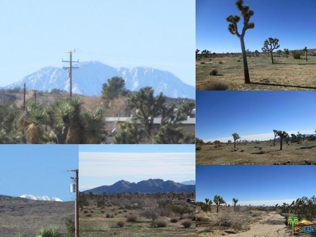 0 Warren Vista 0597-191-20 Avenue, Yucca Valley, CA 92284 (#19419264PS) :: RE/MAX Masters