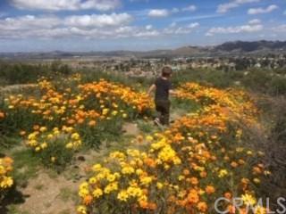0 Mimi Ct, Wildomar, CA  (#SW19029988) :: California Realty Experts