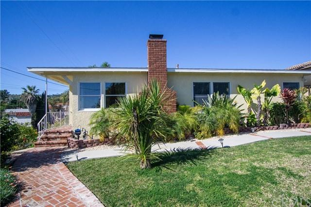 243 S Patton Avenue, San Pedro, CA 90732 (#PV19035149) :: Millman Team
