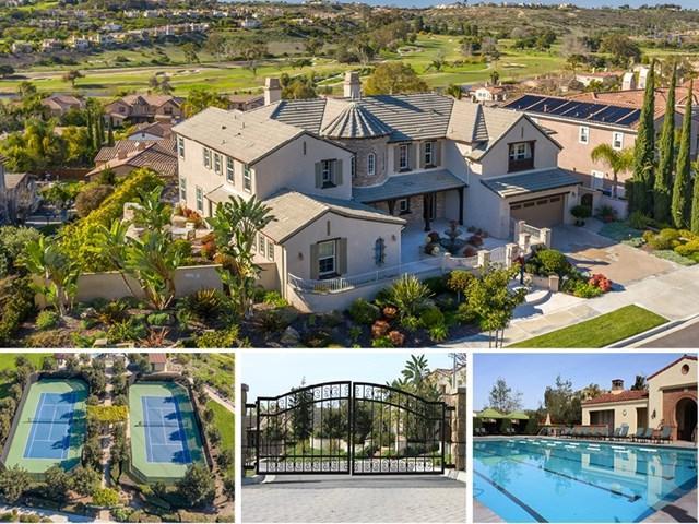 2248 Ivory Pl, Carlsbad, CA 92009 (#190009434) :: McLain Properties