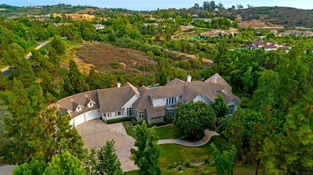 3273 Violet Ridge, Encinitas, CA 92024 (#190013112) :: J1 Realty Group