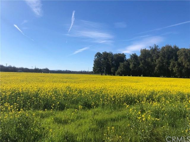 11705 Elk Mountain Road, Upper Lake, CA 95485 (#LC19044847) :: Go Gabby