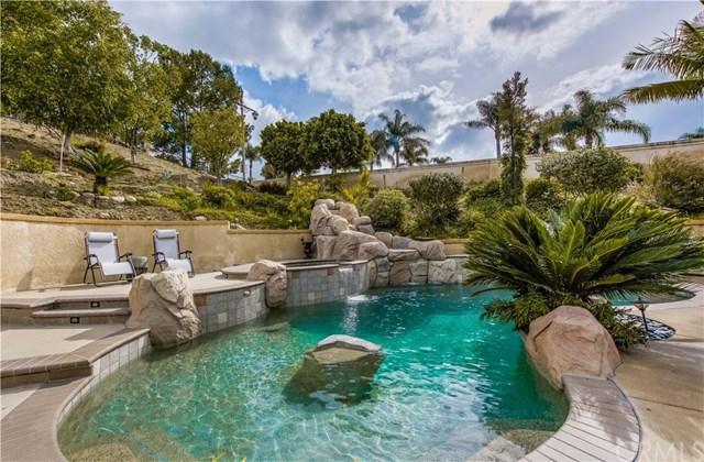 1040 S Brianna Way, Anaheim Hills, CA 92808 (#PW19058294) :: Ardent Real Estate Group, Inc.