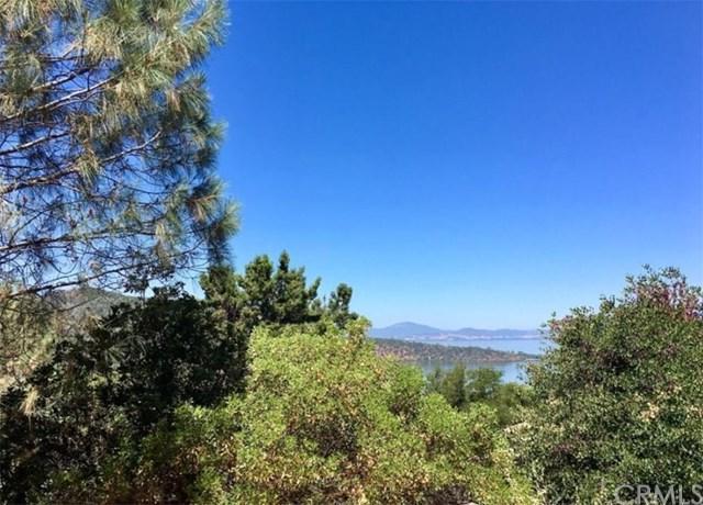 3515 Westridge Circle, Kelseyville, CA 95451 (#LC19061126) :: Kim Meeker Realty Group