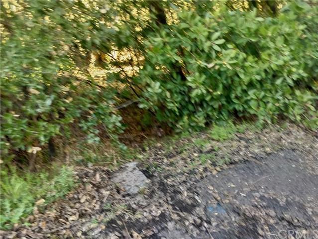 7007 Black Oak Street, Nice, CA 95464 (#LC19061207) :: Kim Meeker Realty Group