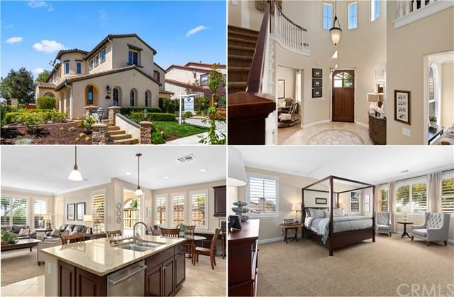 6257 Arbor Rose Drive, Carlsbad, CA 92009 (#ND19078298) :: Kim Meeker Realty Group