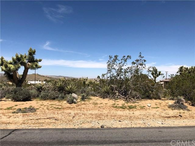 123 Lisbon Drive, Yucca Valley, CA  (#JT19079551) :: RE/MAX Masters