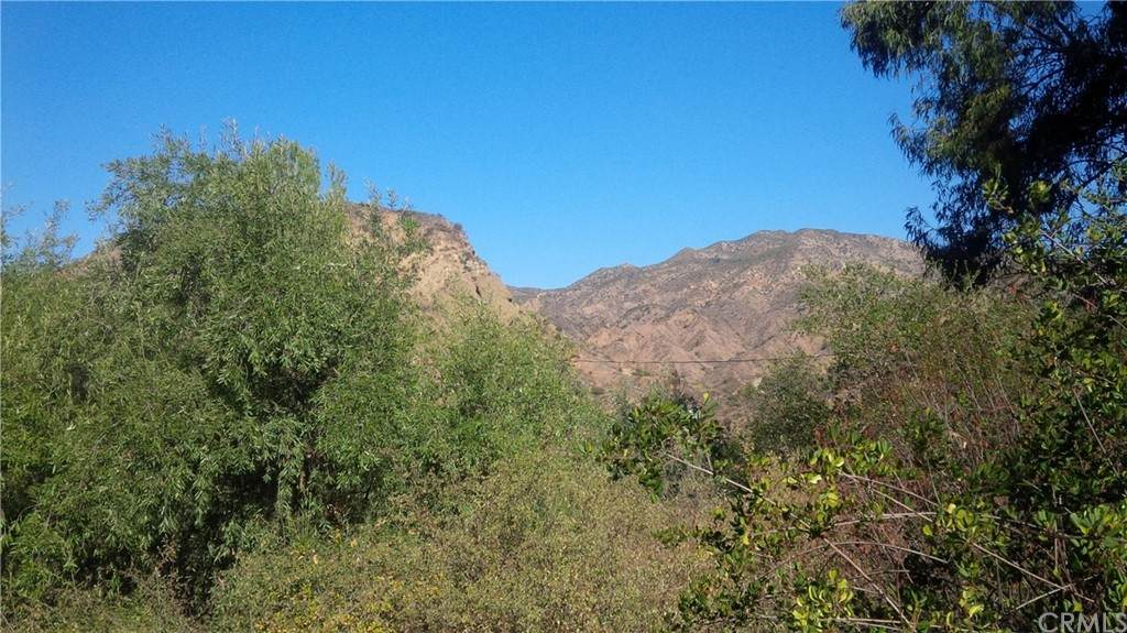 29086 Hill Top - Photo 1