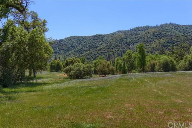 0-2.5 AC Shandee Lane, Ahwahnee, CA 93601 (#FR19102853) :: Fred Sed Group