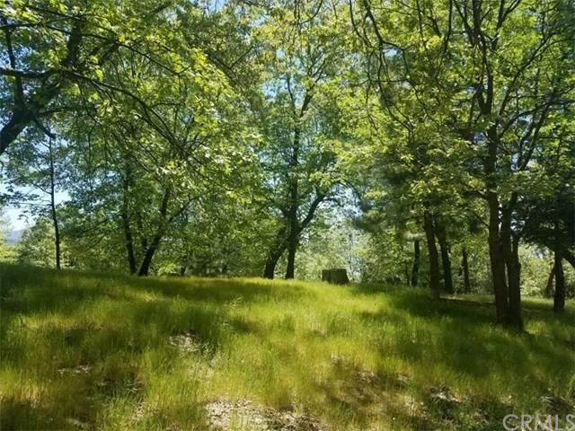 13 Mistletoe Turn - Photo 1