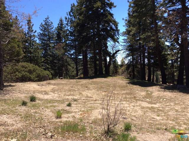 0 Whisper Drive, Running Springs, CA 92382 (#19463922PS) :: J1 Realty Group