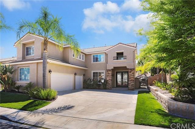 45 Kingfisher Court, Trabuco Canyon, CA 92679 (#OC19119099) :: Fred Sed Group