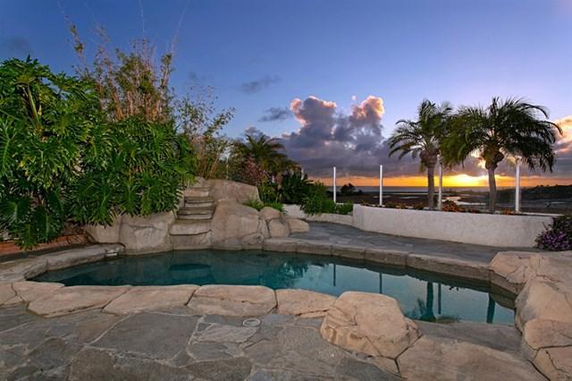 924 Santa Queta, Solana Beach, CA 92075 (#190027941) :: Compass California Inc.