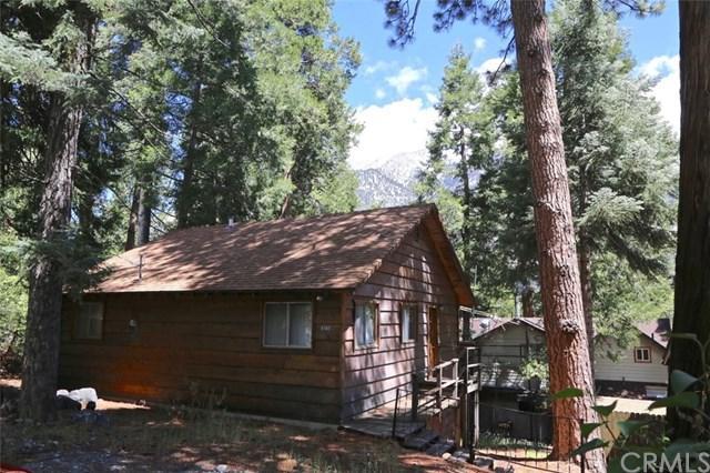 9380 Cedar Drive, Forest Falls, CA 92339 (#EV19118649) :: Fred Sed Group
