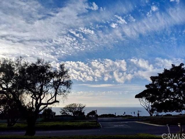1308 Palos Verdes Drive W, Palos Verdes Estates, CA 90274 (#SB19121226) :: Team Tami