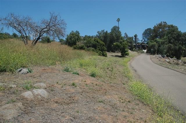 Vista Way - Photo 1