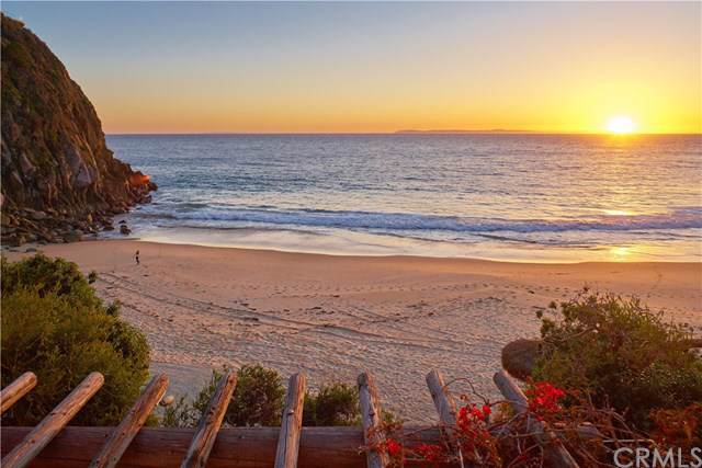 2431 Riviera Drive, Laguna Beach, CA 92651 (#NP19140217) :: Doherty Real Estate Group