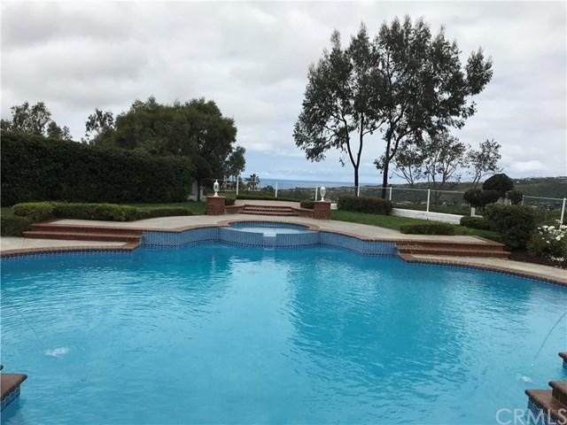 58 Richmond Hill, Laguna Niguel, CA 92677 (#OC19138590) :: That Brooke Chik Real Estate