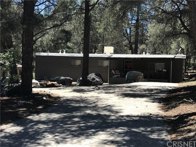 2817 Polar, Pine Mountain Club, CA 93222 (#SR19143735) :: Millman Team