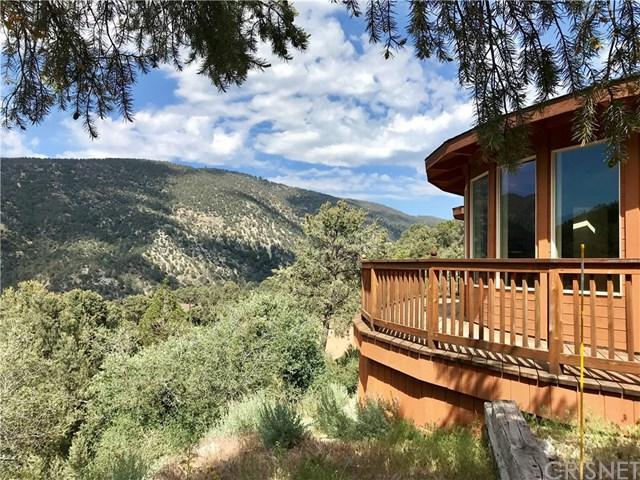 2430 Yellowstone Court, Pine Mountain Club, CA 93225 (#SR19135448) :: Millman Team