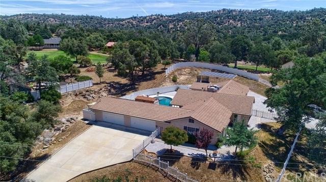 42763 Badger Circle Drive, Coarsegold, CA 93614 (#FR19149921) :: Pam Spadafore & Associates