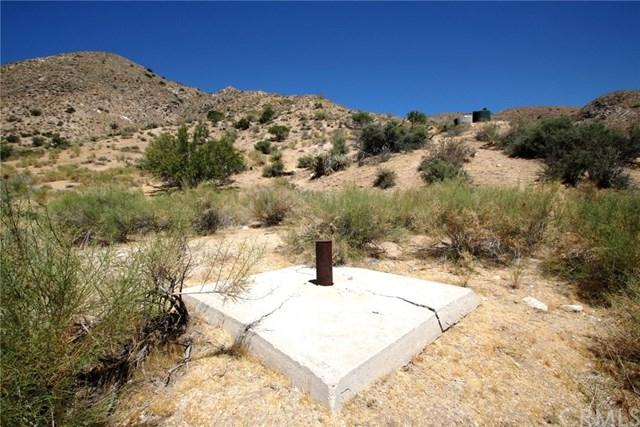 48949 Oregon Trail, Morongo Valley, CA 92256 (#JT19155873) :: Sperry Residential Group