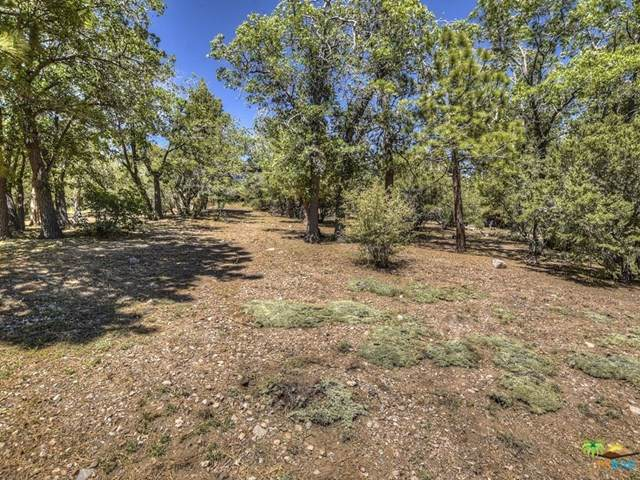 43680 Yosemite, Big Bear, CA 92315 (#19485028PS) :: J1 Realty Group